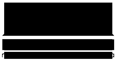 IBV Millenium